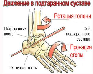 ширина суставной щели коленного сустава норме