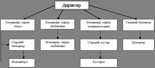 схема структуры предприятия линейная