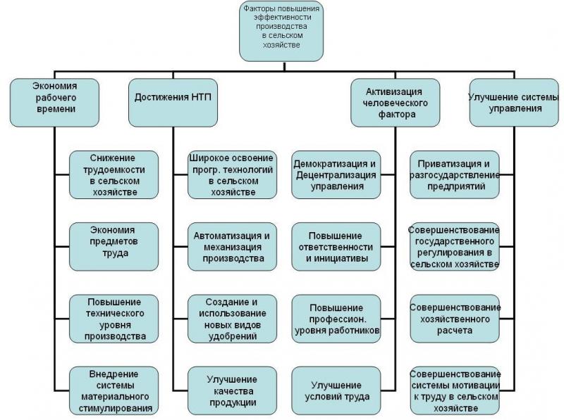 основании полевых шпаргалка работ трудовых процессов на с организация х