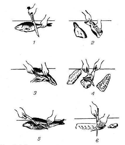 Рисунок 4 – Разделка рыбы с