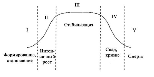 Жизненные стадии и циклы организации реферат 5554