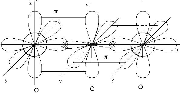 рис.2. схема строения молекулы